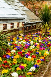 Projekt ogrodu – czym charakteryzuje się odpowiedni plan aranżacji ogrodu