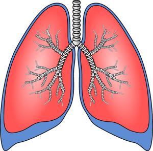 płuca a tlen